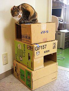 boxtower02.jpg