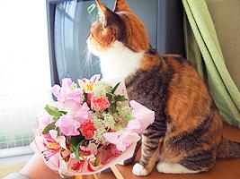 bouquet01.jpg