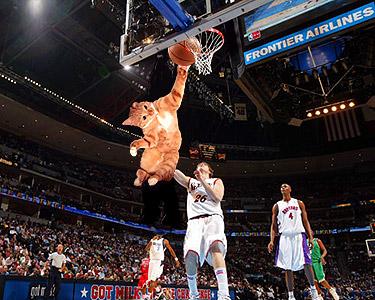 basketball06.jpg