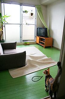 hito_mishiri02.jpg