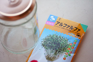 seed_08.jpg