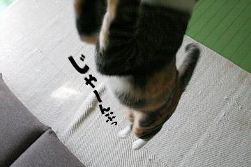 0114_08.jpg