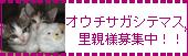 1001_0706.jpg
