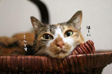 1221_01.jpg